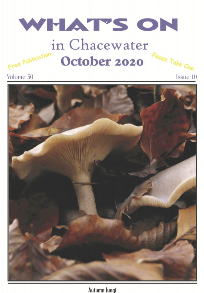 What's on - October 2020 Edition